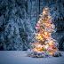 Χριστουγεννιάτικη εκδήλωση στην πλατεία της Παύλιανης Φθιώτιδας!!!