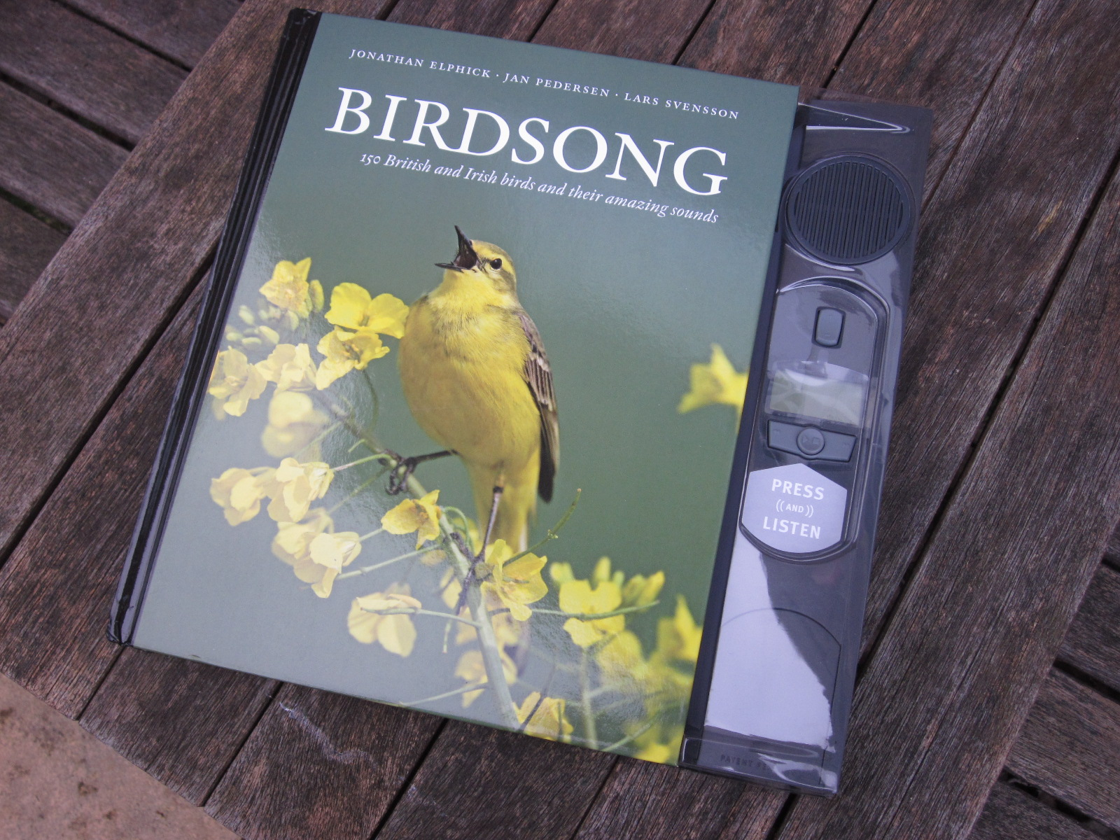 Birdsong novel summary
