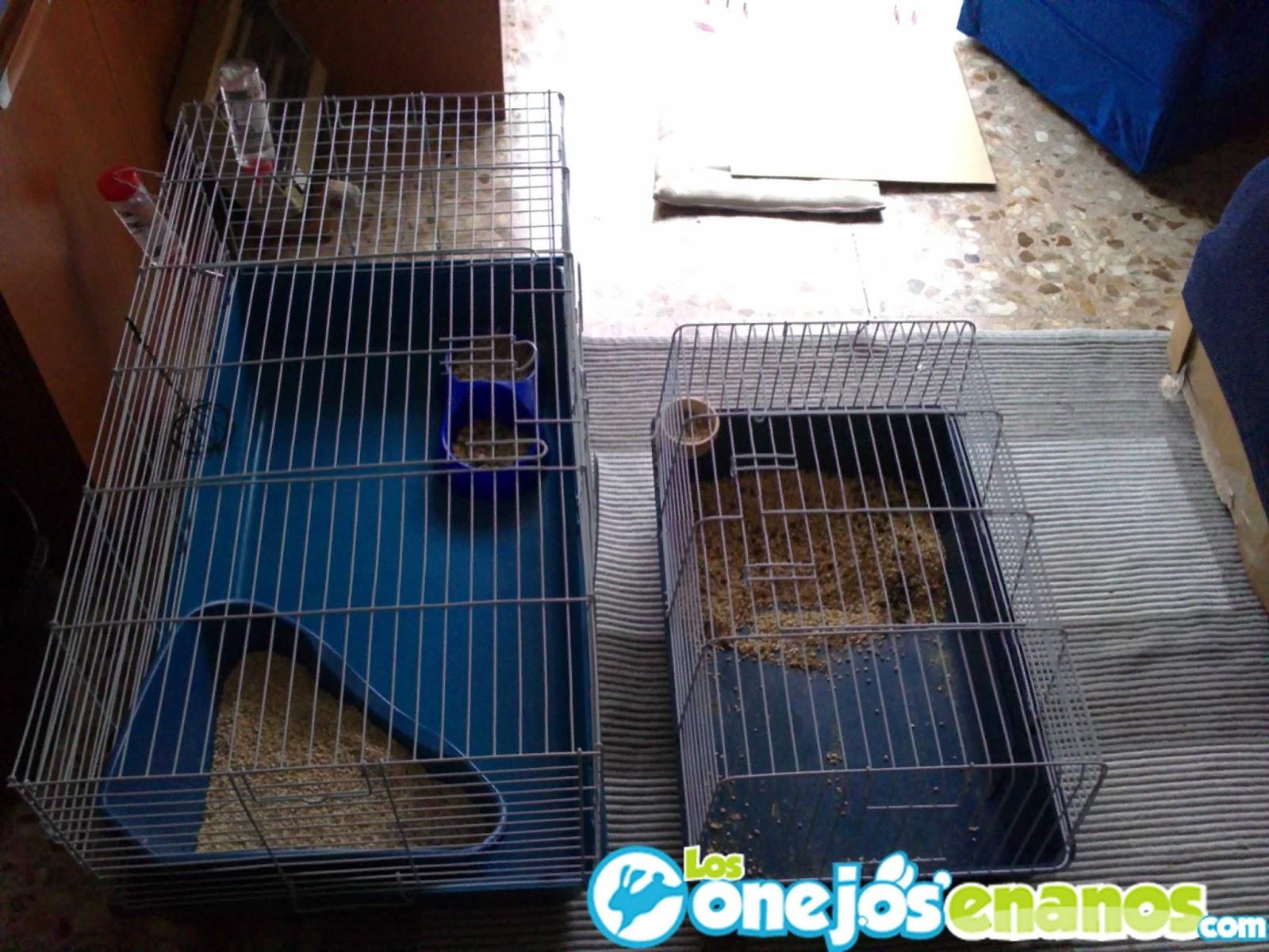 Como debe ser una jaula para conejos dentro de la casa - Casas para conejos enanos ...