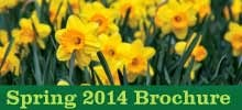 Spring 2014 Events Brochure