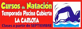 Ya te puedes apuntar a los Cursos de Natación para la Cubierta!!!