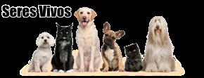 SERES VIVOS | ANIMALES SALVAJES | PLANTAS | HONGOS | ALGAS | BACTERIAS