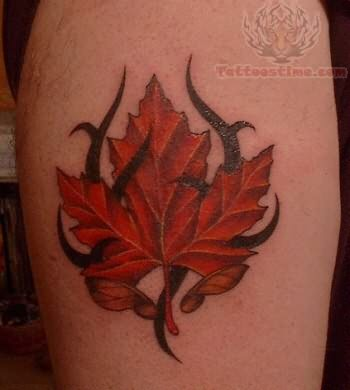 my tattoo designs celtic maple leaf tattoo. Black Bedroom Furniture Sets. Home Design Ideas