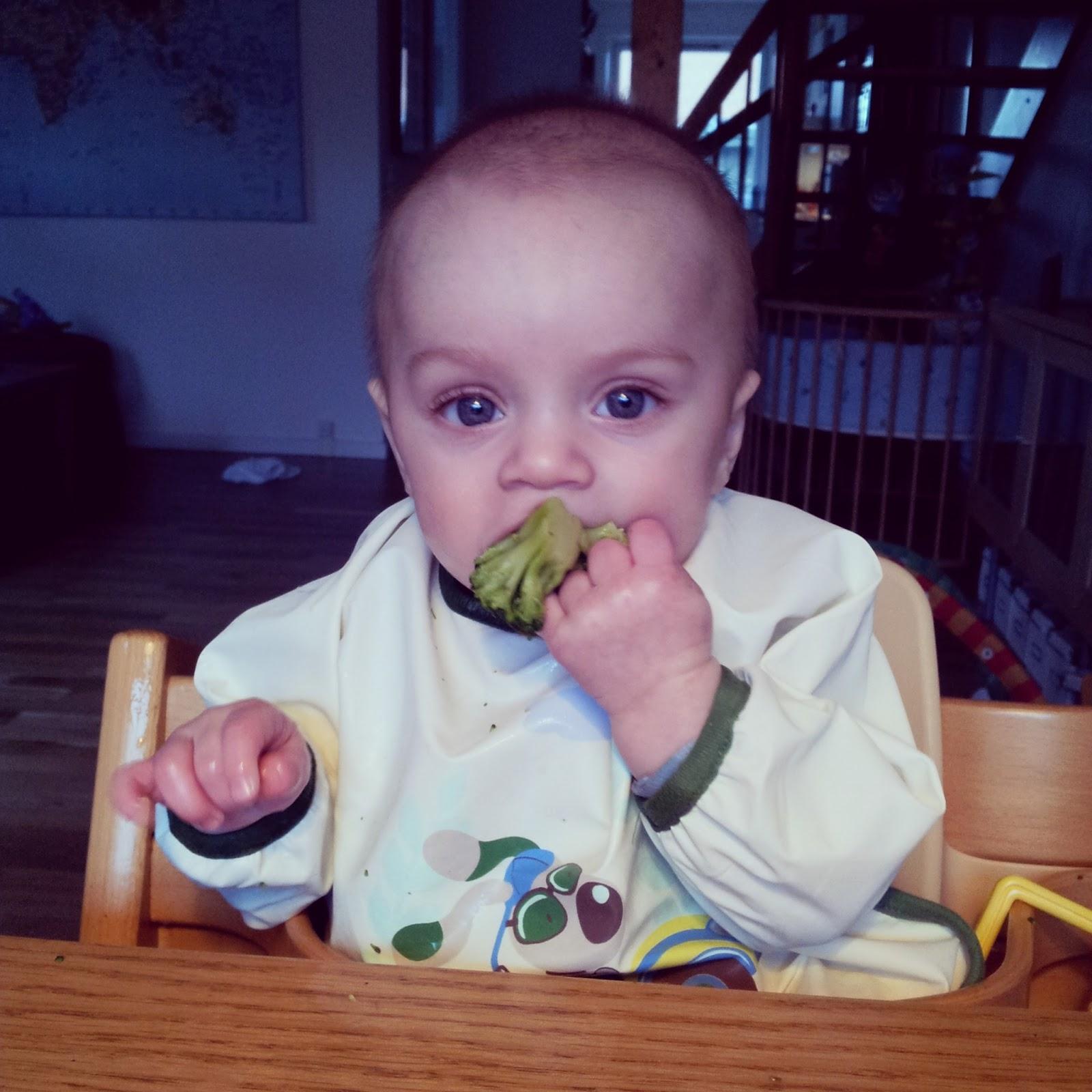 havregrød baby