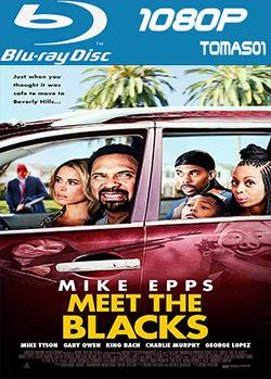 Conociendo a los Blacks (2016) BRRip 1080p