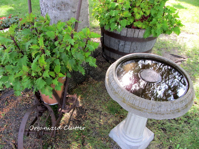 Old cement birdbath