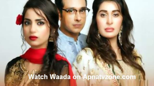 Zee TV Serials Watch Online - Desi Tashan