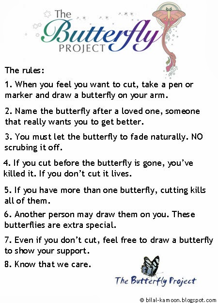 rules of the butterfly project photo