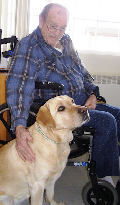 yellow Lab Hope beside man in wheelchair