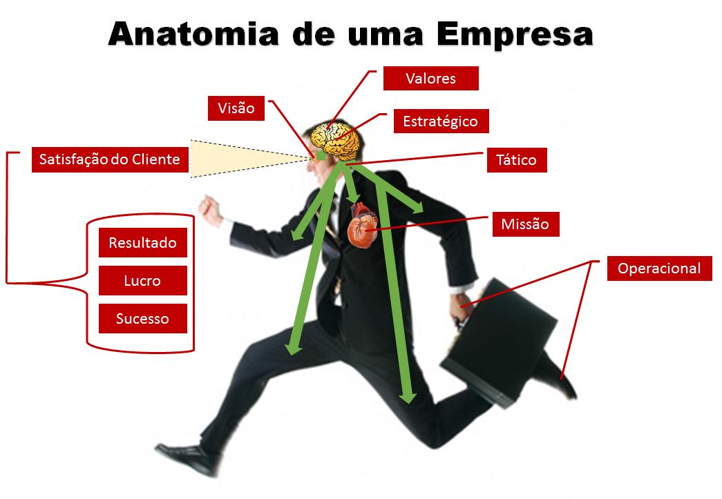 Anatomia de uma Empresa