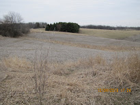 Caves Road, Maquoketa, IA $33,900