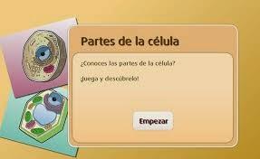 http://www.primaria.librosvivos.net/archivosCMS/3/3/16/usuarios/103294/9/5EP_Cono_cas_ud1_183/frame_prim.swf