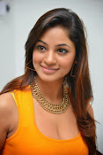 Actress Shilpi Sharma Hot Photo shoot-thumbnail-10