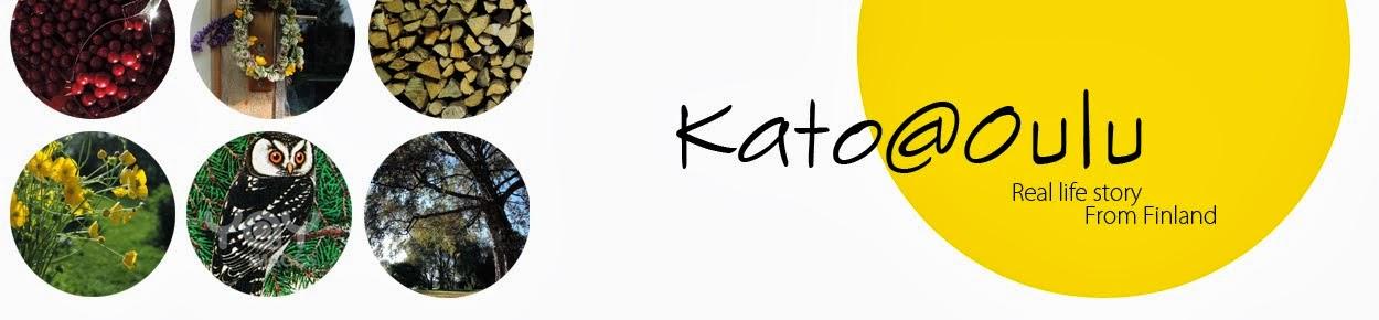 Kato@Oulu | フィンランド小話ブログ