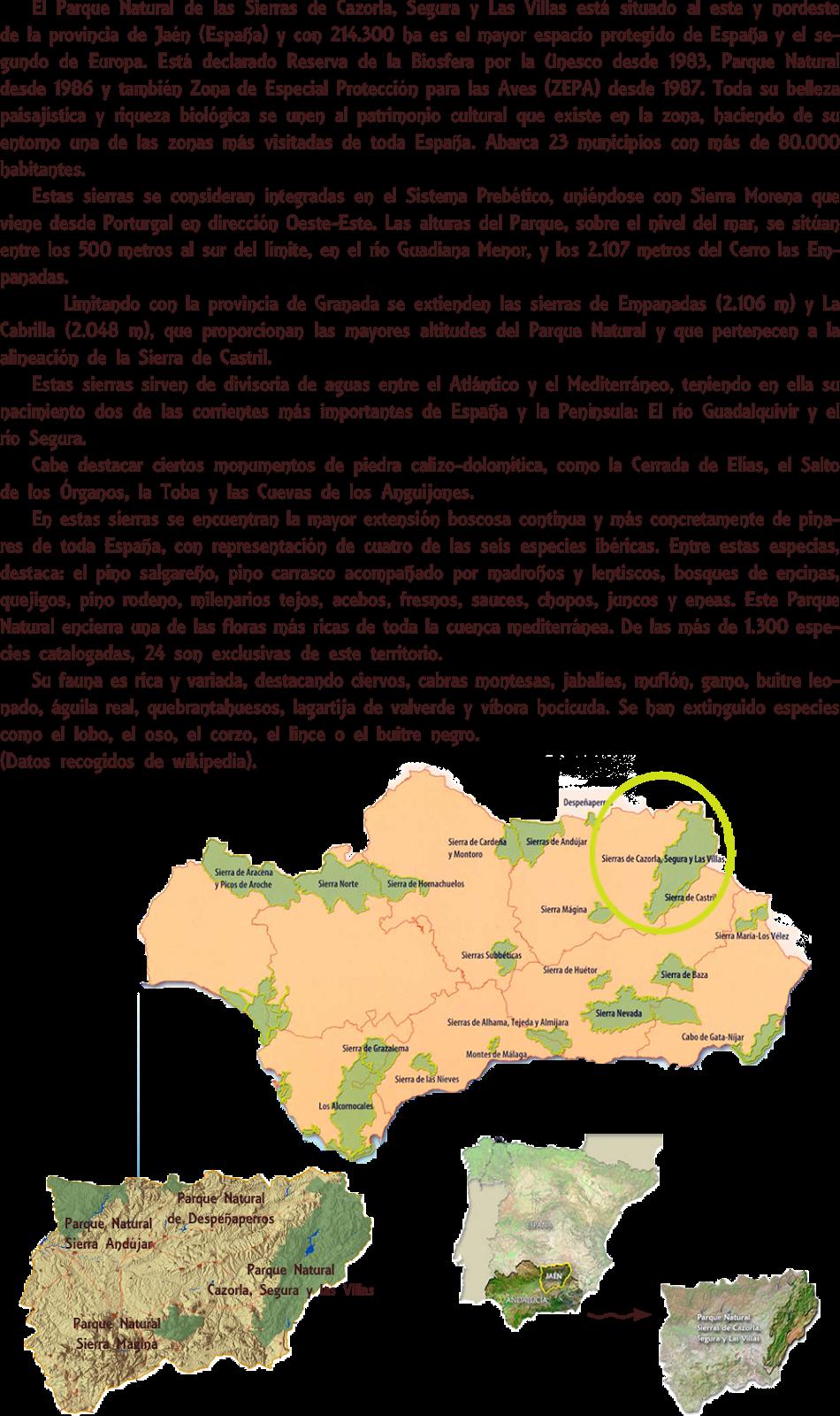 Presentación ruta