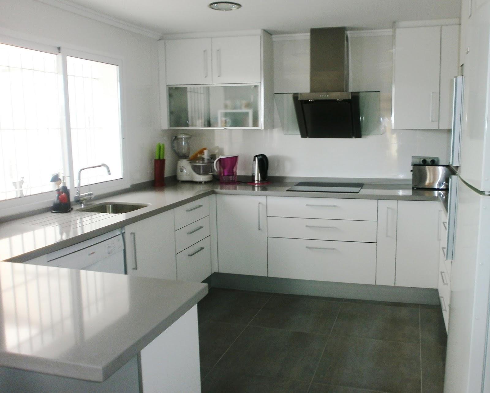 La reforma de la cocina un proyecto que debe ser personal for Cocinas blancas y grises