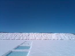 SALINAS GRANDES