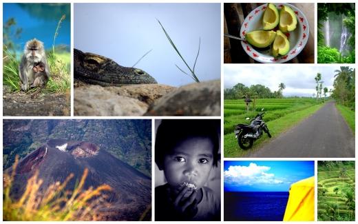 Indonesia Bali Lombok Komodo 2011