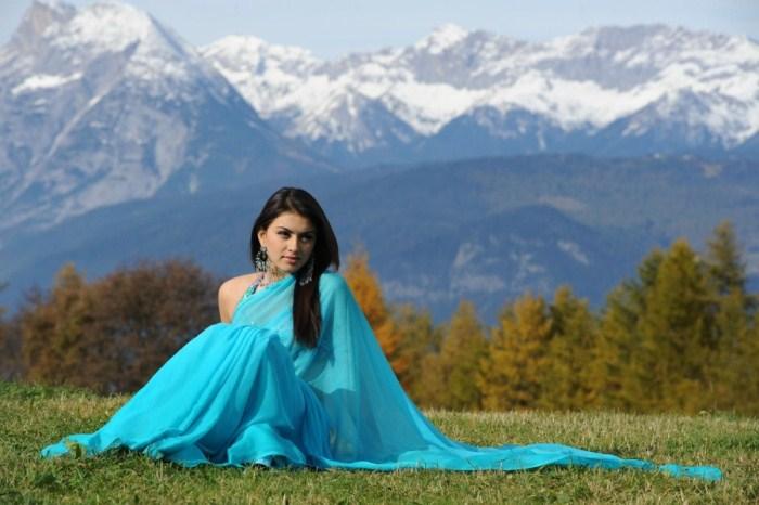 hansika motwani saree photo gallery