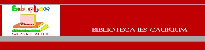 BIBLIOTECA IES CAURIUM