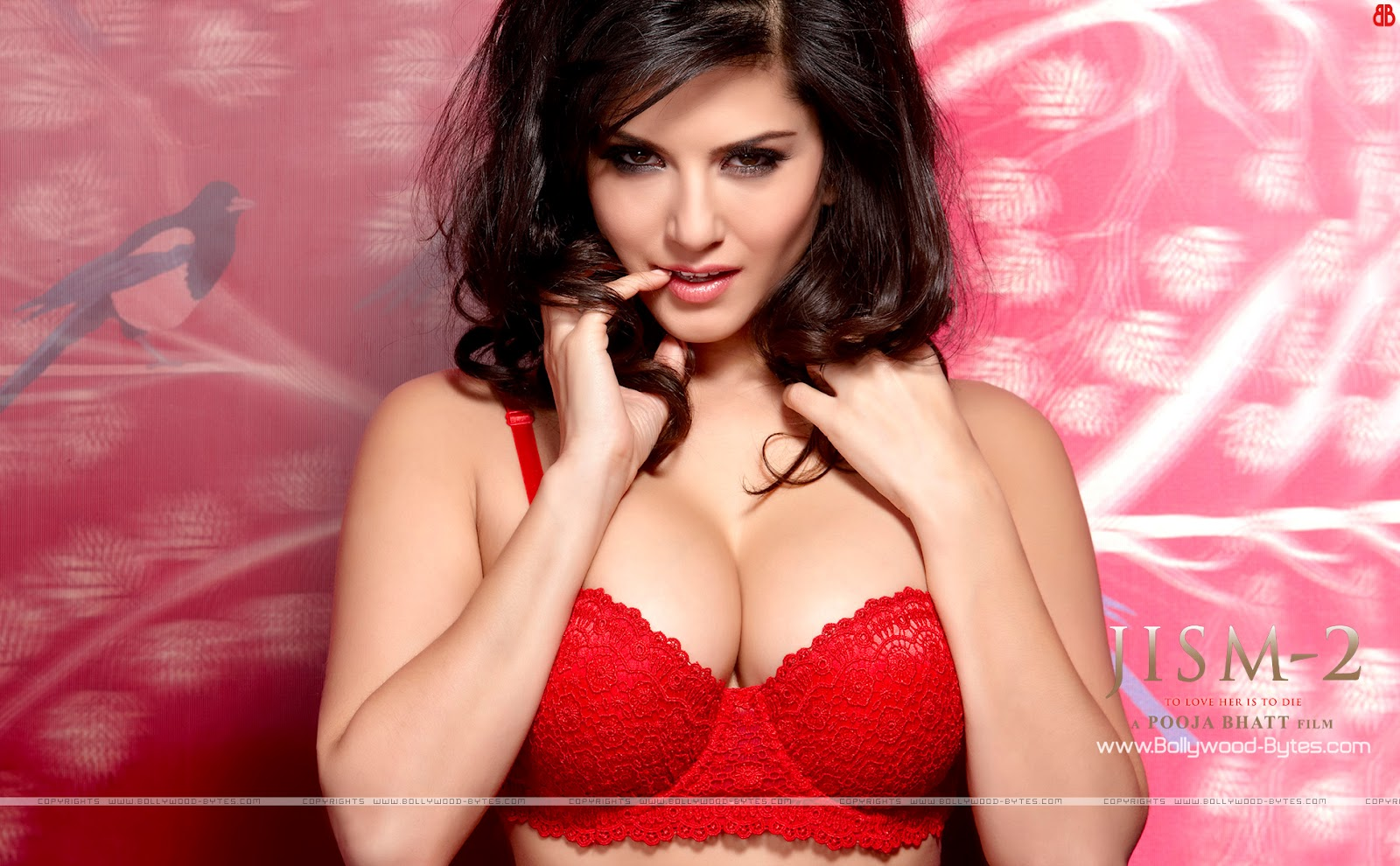sunny leone hot sizzling wallpapers