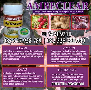 obat herbal ambeien paling ampuh