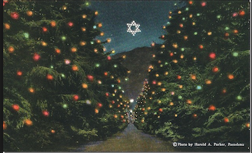 Altadena Historical Society Christmas Tree Lane S Star Of Palawoo