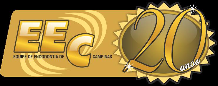 EQUIPE DE ENDODONTIA DE CAMPINAS