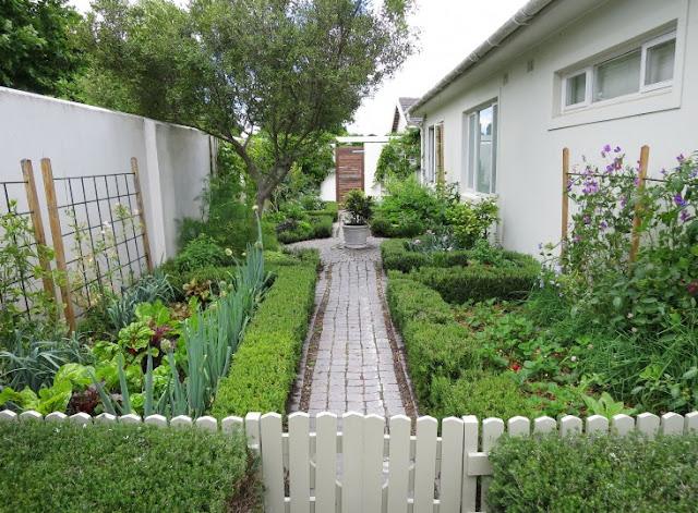 khu vườn mát mẻ