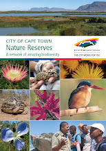 Meadowridge Common in City of Cape Town Nature Reserves booklet