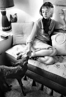 Audrey Hepburn with deer 'lp' and dog 'Famous', Beverly Hills