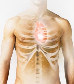 Dia do Coração: doenças cardiovasculares matam 17 milhões ao ano em todo o mundo