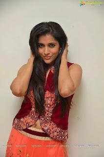 Rashmi Gautam looks gorgeous in Orange Anarkali Dress at Guntur Talkies Press meet Spicy Pics
