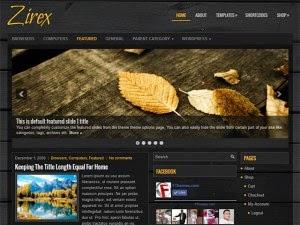 Zirex - Free Wordpress Theme