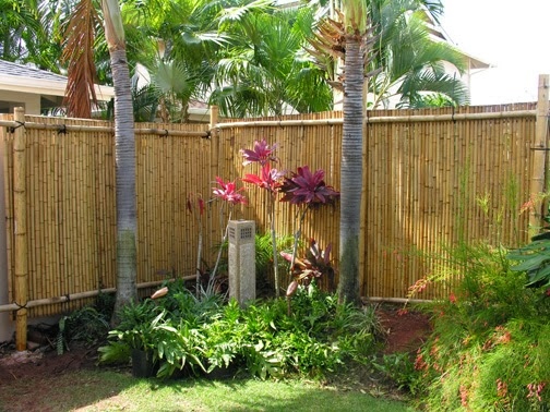 tips for bamboo fencing fencing salebamboo fence dealsbamboo fence discount to bamboo fence rolls bamboo fence rolls roll out bamboo