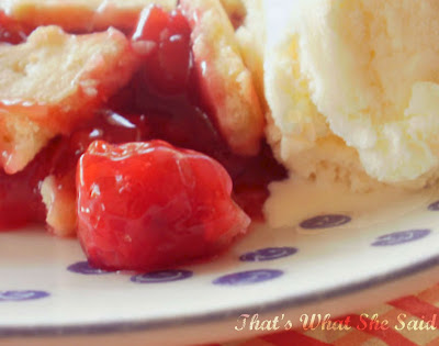 Cherry Pie ala mode, Afternoon Picnic, Food Photography, Mastering Food Photography with Sony, Photography Portfolio