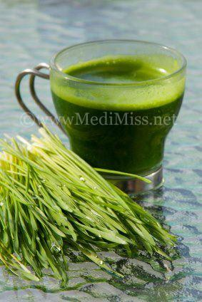 Magical Health Benefits of Wheatgrass Juice