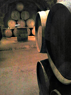 Winery in Laguardia, Spain