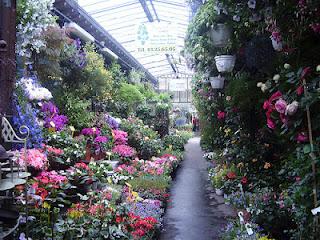 Mercado de las flores de París