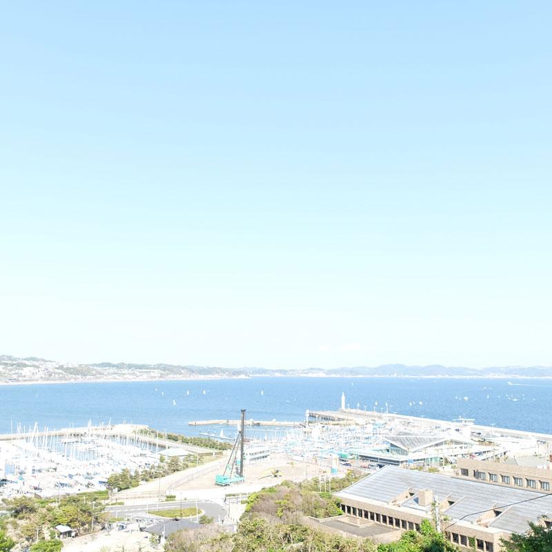 江ノ島から眺めた景色