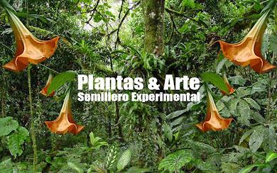 Plantas y Arte