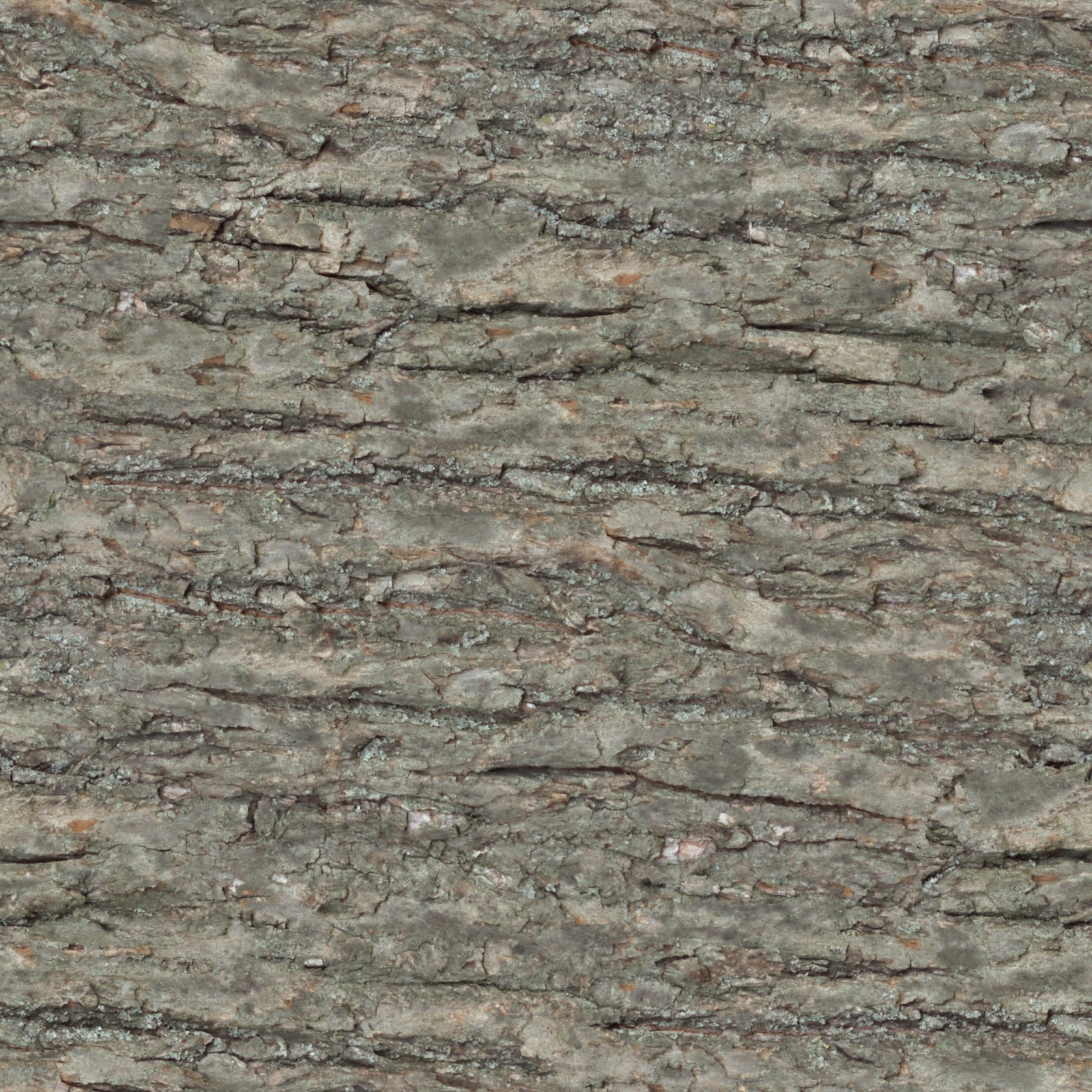 (Wood 25) tree bark plank seamless texture 2048x2048