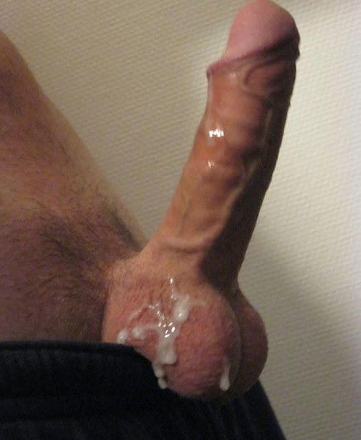 Biggest erect penis pics