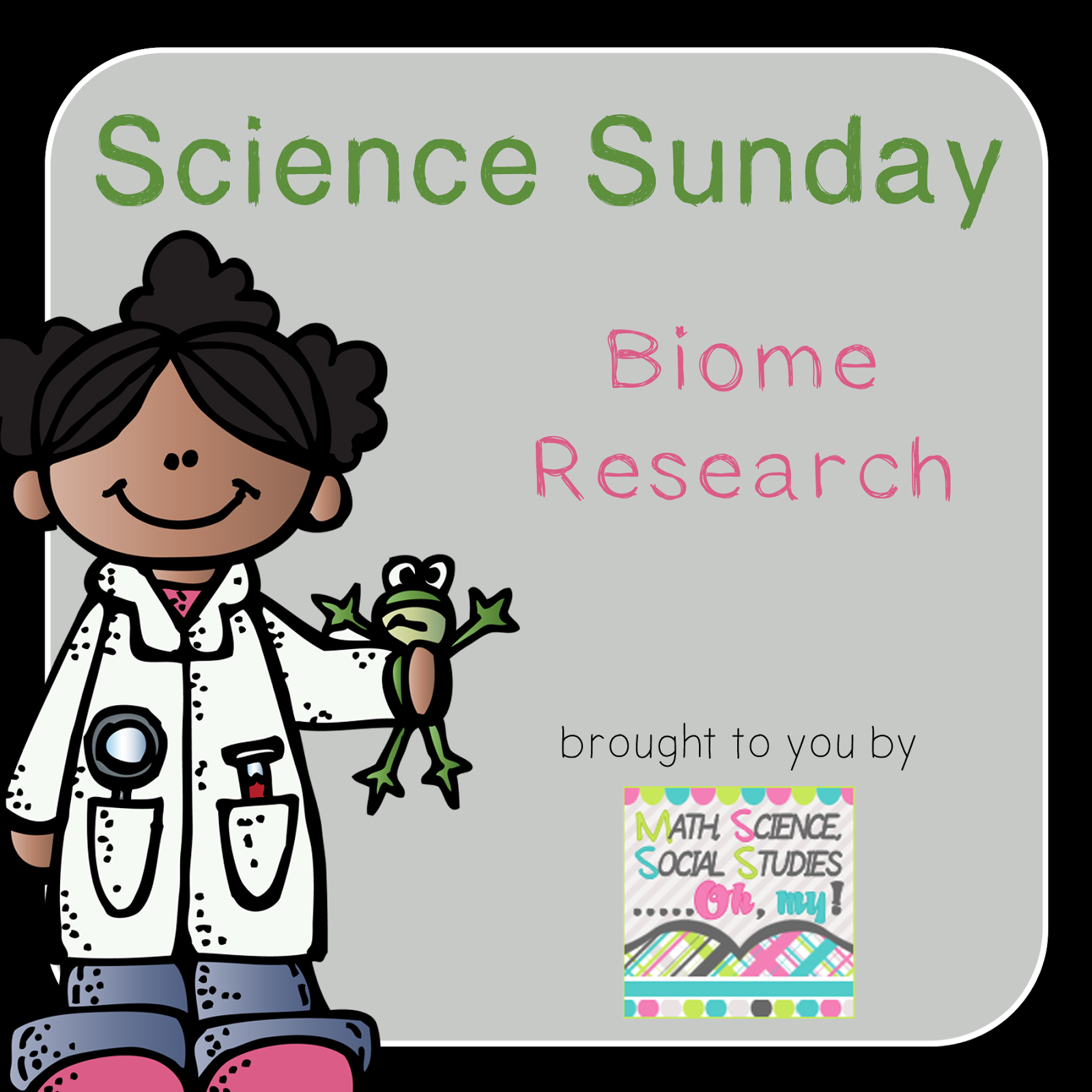 biome research paper Essay/term paper: biome broadcast essay, term paper, research paper: science see all college papers and term papers on science.