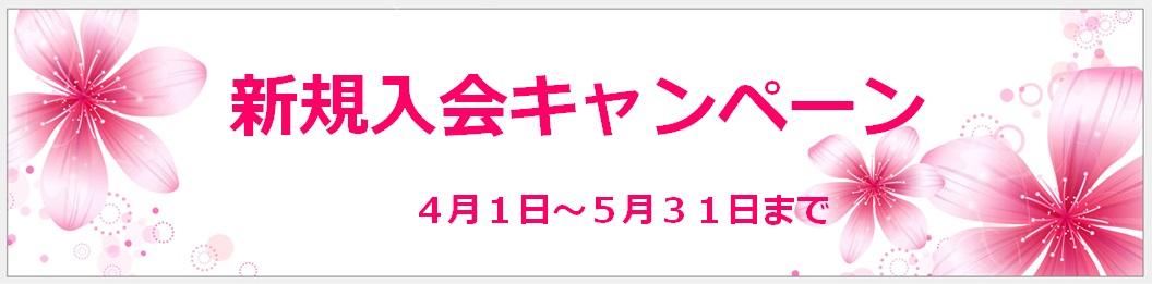 新規入会キャンペーン実施中      ↓クリック