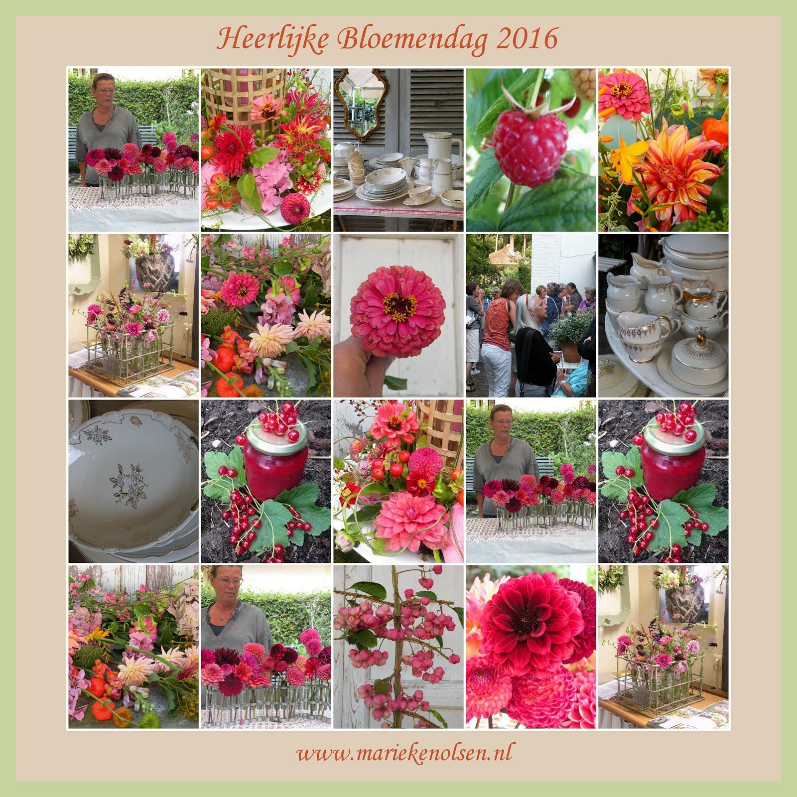 """""""Heerlijke Bloemen Dag """" 2016"""