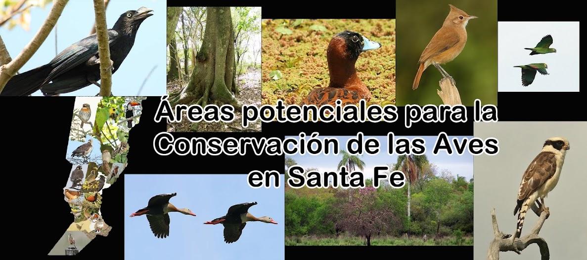 Aves de la provincia de Santa Fe