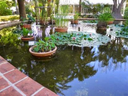 Beneficios naturales davila tipos de jardines y sus for Tipos de jardines