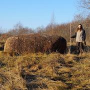 В Новгородской области обнаружили древний культовый камень