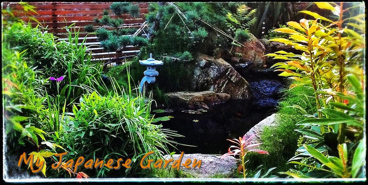 My Japanese Garden - European Association
